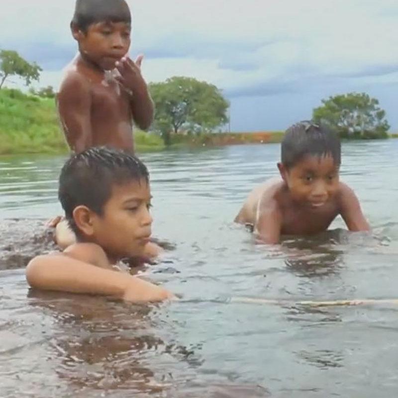 Você já assistiu a filmes indígenas?